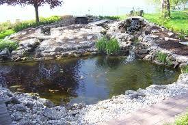large backyard ponds