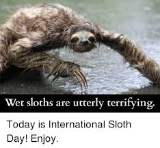 The Sloth Meme - wet sloths are made of nightmares follow me for more creepy
