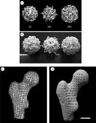 customized ca u2013p phbv nanocomposite scaffolds for bone tissue