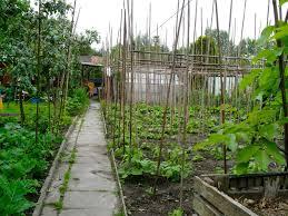 art of the garden european allotment gardens