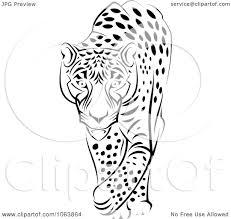 jaguar clipart clipart walking jaguar black and white royalty free vector