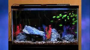 Aquarium Led Lighting Fixtures Petsolutions Aquatic Expandable Led Aquarium Lighting