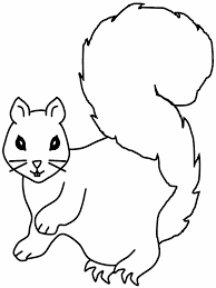 23 best animal outlines images on pinterest templates draw and