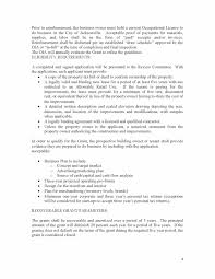 Example Of Executive Summary For Resume Plan Template Resume No Experience Vosvetenet Template For