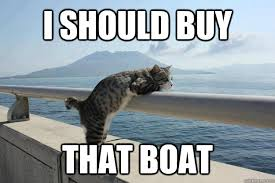 Cat Buy A Boat Meme - i should buy that boat daydreamer cat quickmeme