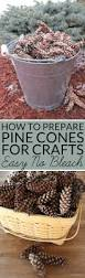 26 best pinecone crafts images on pinterest