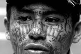 ms 13 gang tattoos free tattoo design
