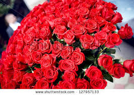 big bouquet of roses big bouquet roses stock photo 127957133