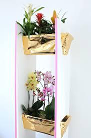 Herb Shelf 330 Best Indoor Plants Images On Pinterest Indoor Plants Plant