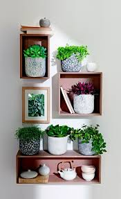 Modern Houseplants by 99 Great Ideas To Display Houseplants Indoor Plants Decoration