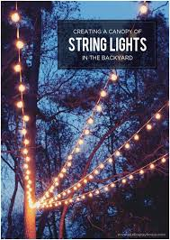 Backyard Wedding Lighting Ideas Backyards Awesome A Canopy Of String Lights In Our Backyard 94