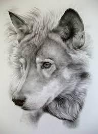 wolf sketch best tattoo designs