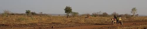 chambre agriculture du var a la rencontre du réseau des chambres d agriculture du niger resad