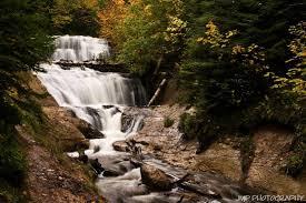 Michigan Vegetaion images Michigan waterfalls jpg