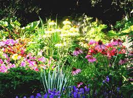 flower garden designs for beginners flower arrangement ideas