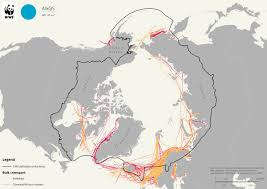 Waterfowl Migration Map Exploring The Arctic