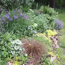 Rock Garden Perennials by How To Plant In Rocky Soil Hgtv