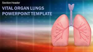 powerpoint design lungs vital organ lungs a powerpoint template from presentermedia com