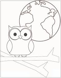 cute owl pictures to color