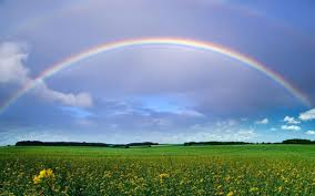 rainbow wikipedia the free encyclopedia 7 colours of
