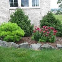 front yard landscape engrossing small landscaping ideas for rock