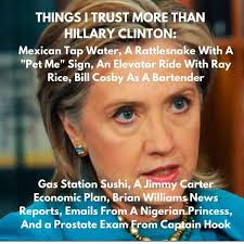 Hillary Memes - things i trust more that hillary conceal carry network forum
