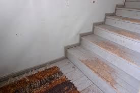 treppe sanieren holztreppe sanieren was kostet es myhammer preisradar