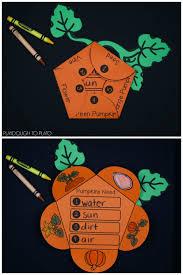 pumpkin activity pack preschool and kindergarten the stem