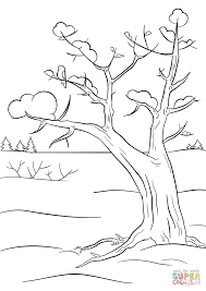 winter tree coloring page free printable coloring pages
