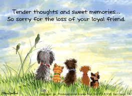 dog condolences the writer s dog sympathy cards for pets