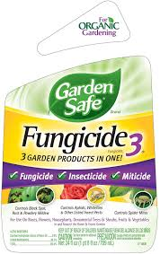 amazon com garden safefungicide3 ready to use hg 10414x 24