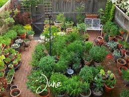 Potted Garden Ideas Potted Vegetable Garden Ideas 14 Astounding Potted Garden Ideas