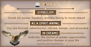 eagle meaning and symbolism the astrology web