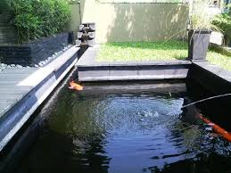 outdoor and patio fairly rectangle backyard pond ideas mixed with