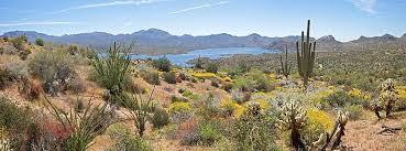 Arizona scenery images Arizona advisory council on indian health care jpg
