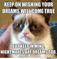 In Your Dreams Meme - grumpy cat mocks your dreams by dasarcasticzomb meme center
