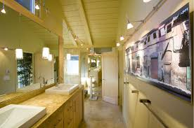 austin bathroom track lighting contemporary with skylights