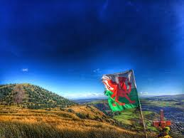 New South Wales Flag Beauty Of Wales Beauty Wales Twitter