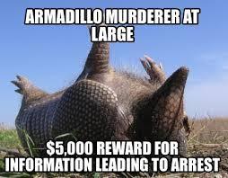 Armadillo Meme - meme creator play dead armadillo meme generator at memecreator org