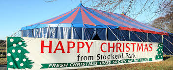 Natural Christmas Tree For Sale - christmas tree shop stockeld park near leeds york u0026 harrogate