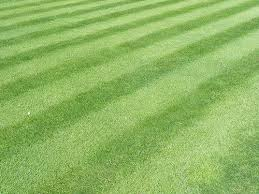 How To Build A Baseball Field In Your Backyard Make Your Yard Look Like Wrigley Field The Art Of Manliness