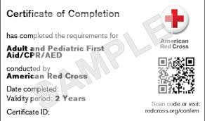 pdf cpr card template 28 pages 9 best images of free cpr