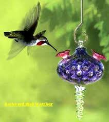 blown glass hummingbird feeders hummingbird tips