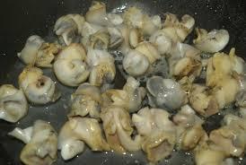 cuisiner des bulots pâtes aux bulots balade gourmande de cécile