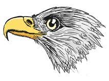 bald eagle sketch stock illustrations u2013 164 bald eagle sketch