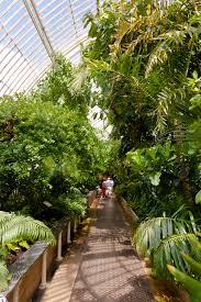 Garden Inside House by File Upper Walkway Inside Palm House At Kew Gardens Jpg