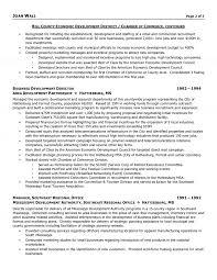 Executive Summary Example Resume Sample Resume Of Executive Director How To Write A Graduate Essay