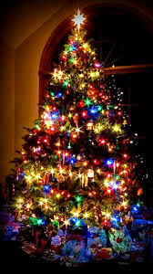 christmas tree with colored lights christmas lights clipart feliz navidad pencil and in color