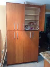 tall kitchen cabinet tall kitchen cabinet with doors home decorating interior design
