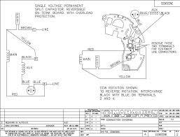 marathon electric motor wiring diagram u0026 wiring diagram of single